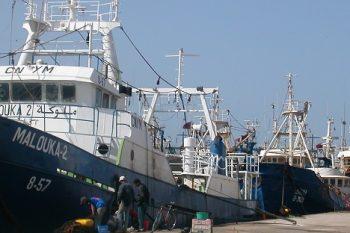 Agadir VMS