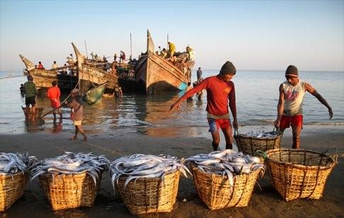 Bangladesh fishers