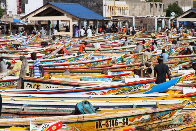 Mauritania fishers