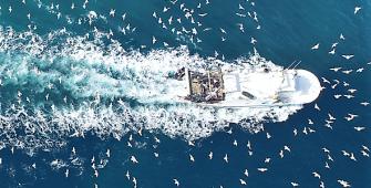 Fisheries Monitoring Center