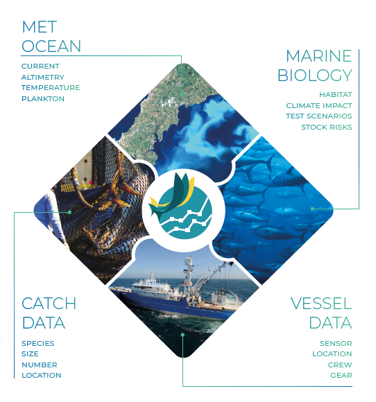 big data fisheries analytics intelligence DOLFIN
