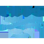logo NPFC